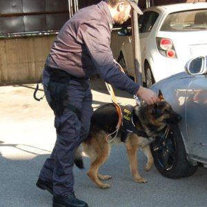 """Marcianise, Operazione """"Smoke Snake"""" fase 2. Altri tre arresti per il traffico di eroina dall'Albania. Rifornivano piazze di spaccio a Grumo Nevano, Casandrino, Melito ed Acerra"""